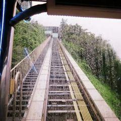 南山纜車用戶圖片