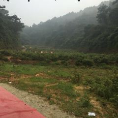 Taikangshan Ecology Travel Resort User Photo