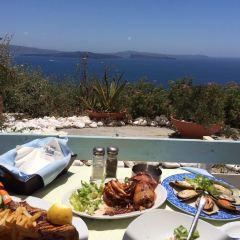 Seagull Restaurant用戶圖片