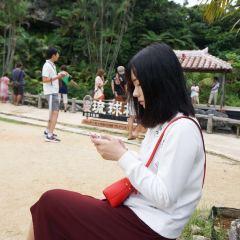Kuruchi   Tickets, Deals, Reviews, Family Holidays - Trip com