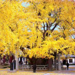 Fulaishan Scenic Area User Photo