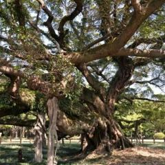 平潭海島國家森林公園用戶圖片