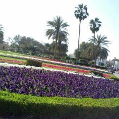Burj Park User Photo