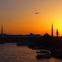 Bosphorus Bridge User Photo