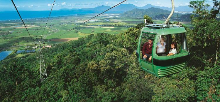 Skyrail Rainforest Cableway3