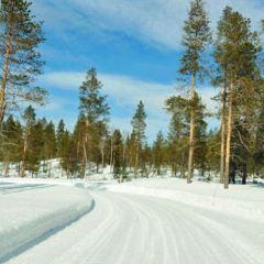 Saariselkä User Photo