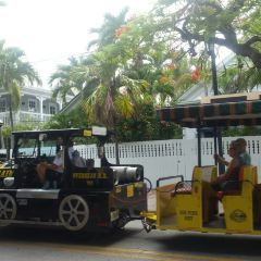 Key West Turtle Museum User Photo
