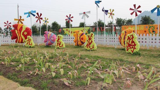 주룽 꽃밭 관광단지