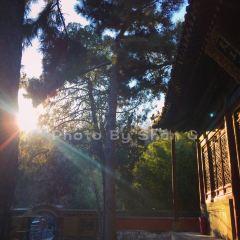 탄저사 여행 사진