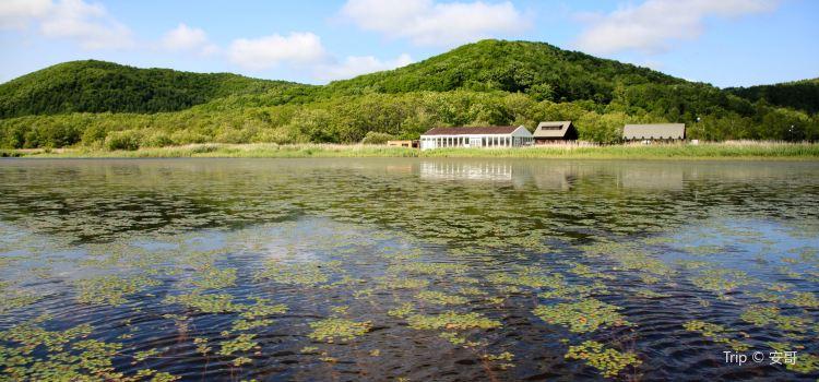 Kushiro Shitsugen National Park2