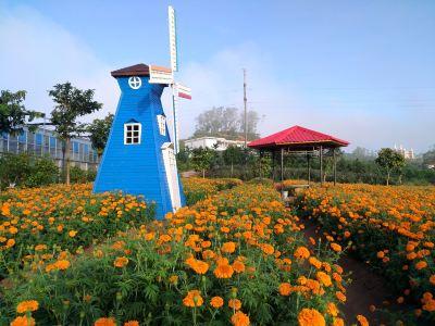 夢幻香山芳香文化園
