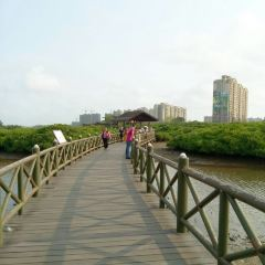 Chengmai R & F Mangrove Wetland Park User Photo