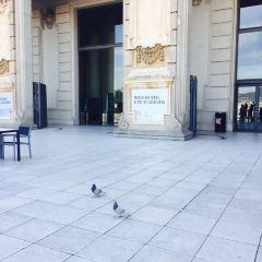 Palau Sant Jordi User Photo
