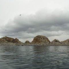孤插山(三塊石)用戶圖片