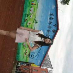 Bashang Grasslands User Photo