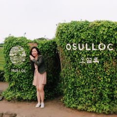 Osulloc Tea Museum User Photo