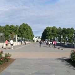 Vigelandsparken User Photo
