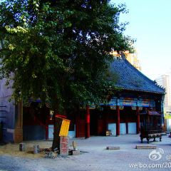 Wusheng Temple User Photo