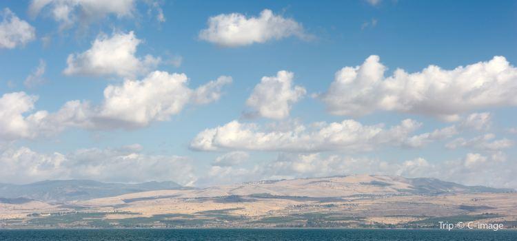 Sea of Galilee3