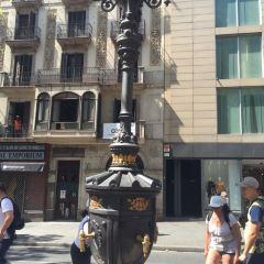 Placa la Boqueria User Photo