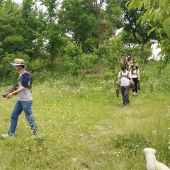 Jingu Farm User Photo