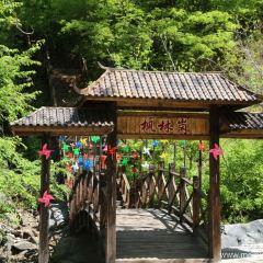 Tiannvshan Forest Park User Photo