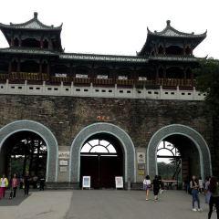 Xuanwu Lake User Photo