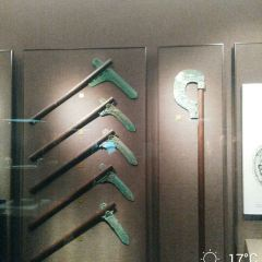 甘肅省博物館用戶圖片