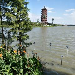 Huayang Lake Ecological Wetland Park User Photo