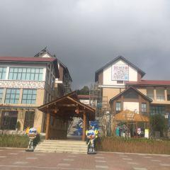 華僑城V谷樂園用戶圖片
