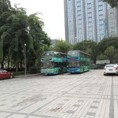 Roundabout Sightseeing Bus User Photo
