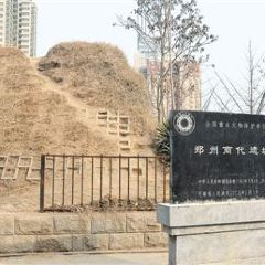 Runis of Shang Dynasty User Photo