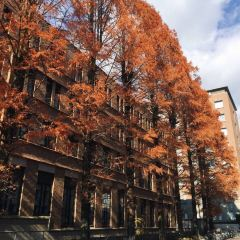 京都大學用戶圖片