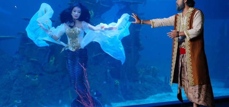 Jakarta Aquarium3