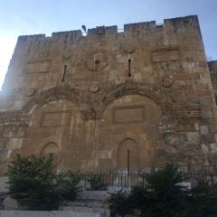 以色列博物館用戶圖片