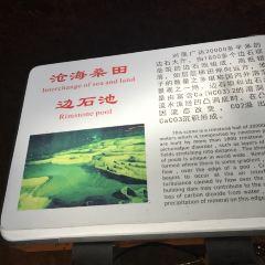 黃仙洞用戶圖片