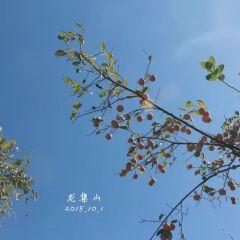 Longji Mountain User Photo