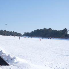 瀋陽棋盤山滑雪場用戶圖片