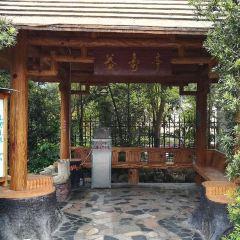 사오관 신펑강 온천 여행 사진