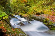 太鲁阁国家公园-太鲁阁-doris圈圈
