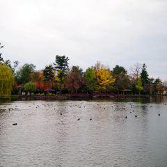 Tokiwa Park User Photo