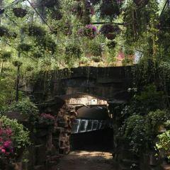 Tanhuasi Park User Photo