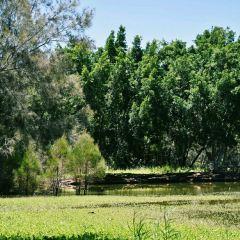 Bundaberg Botanic Gardens User Photo