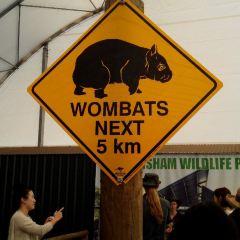 Perth Zoo User Photo