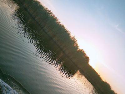 相思湖景區