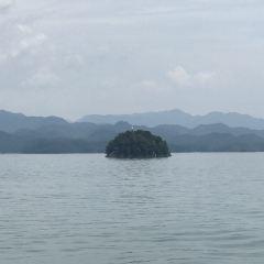 Thousand Islands Cruises User Photo