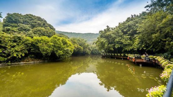 Yuanlianwan Park
