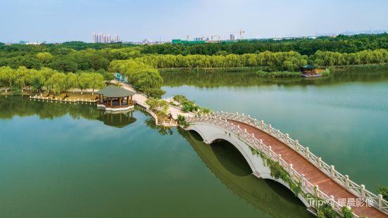 Tianjin Tanggu Forest Park