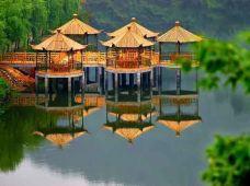 绿林山生态旅游度假村-京山