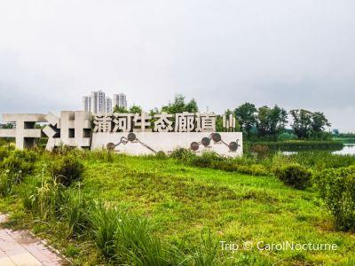 蒲河國家濕地公園